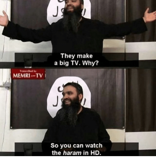 memri-tv-they-make-a-big-tv-why-so-you-18281457.png