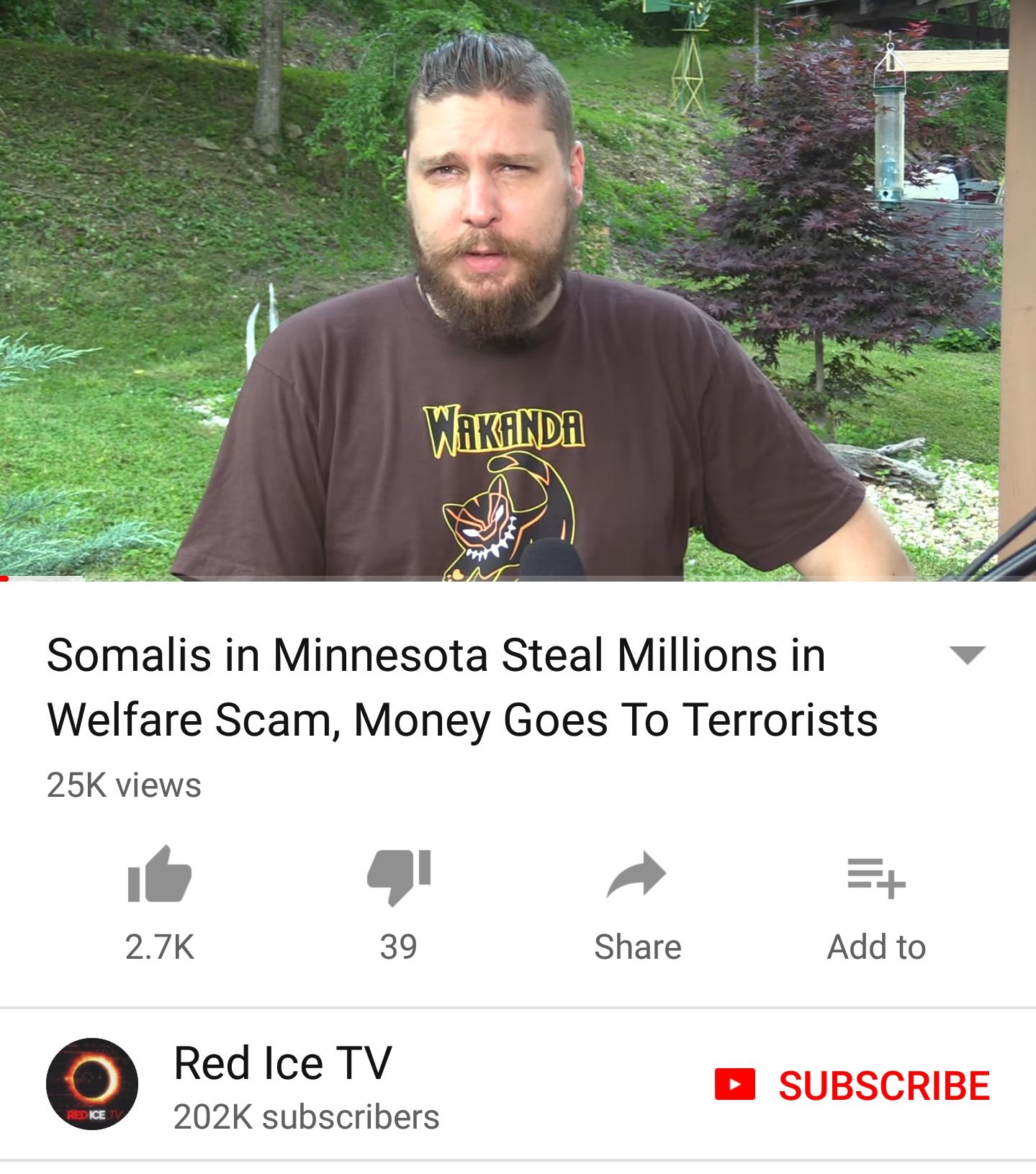 Minnesota Somali Welfare
