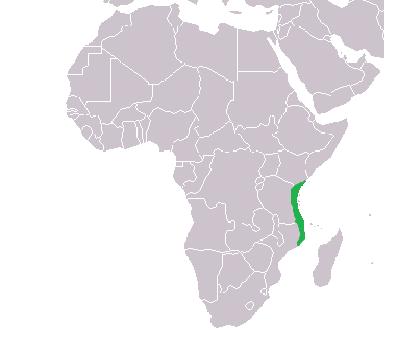 Swahili_coast.png